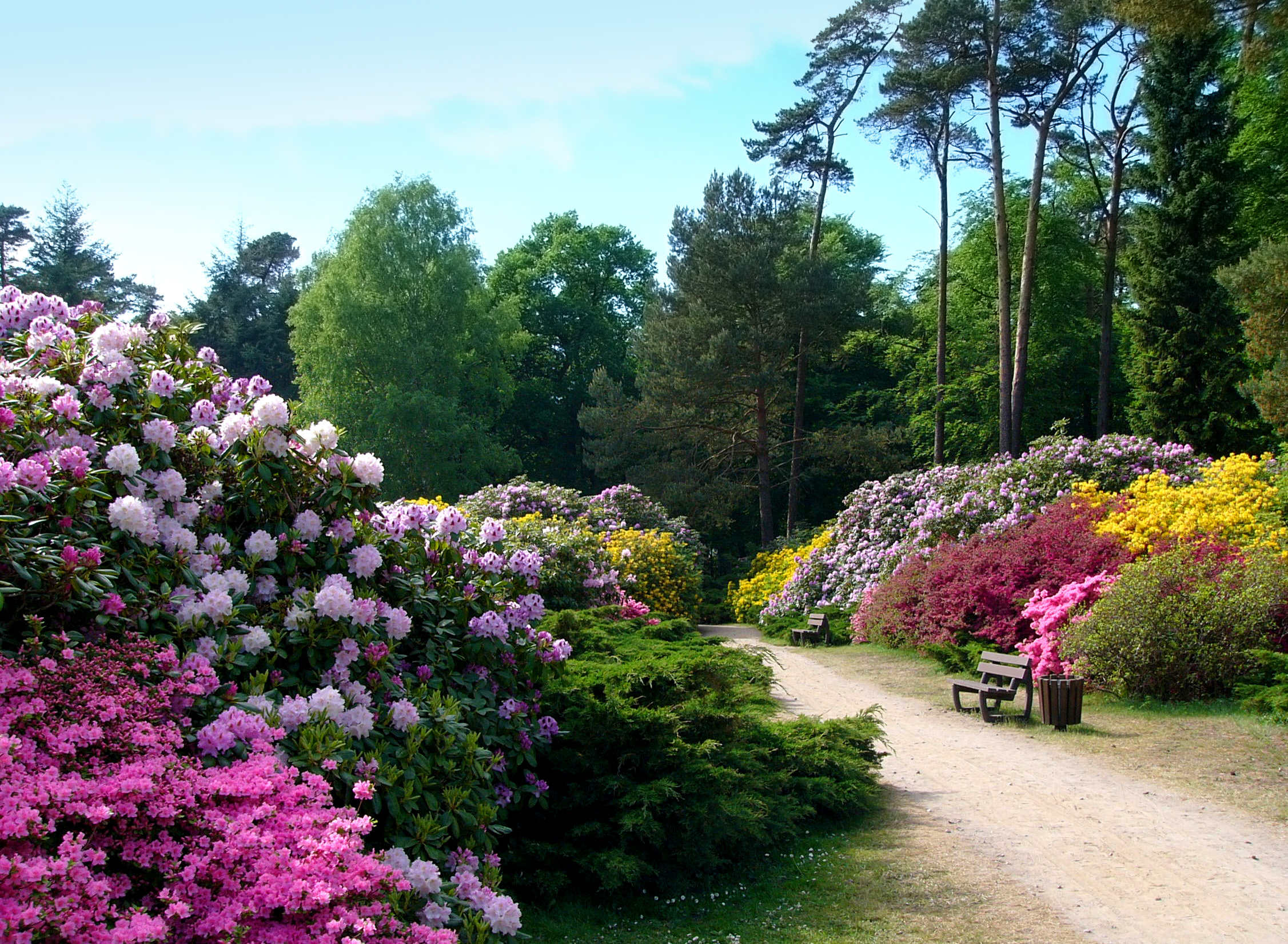 rhododendronpark hirsch haus. Black Bedroom Furniture Sets. Home Design Ideas